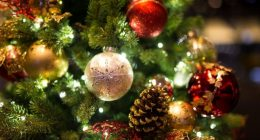 Christmas Menu in December 2019